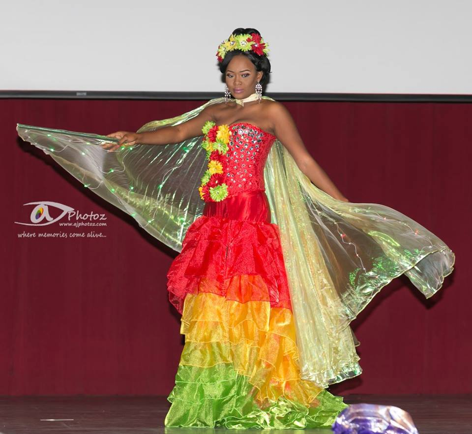 Miss Africa USA Parade of Nations 2015 Was The Highlight of Pageant Night